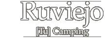 logo_noel_00